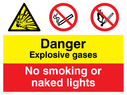 dual sign explosion warning symbol & no matches symbol Text: explosive gases no smoking or naked lights