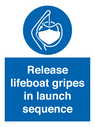 <p>Release lifeboat gripes in launch sequence</p> Text: