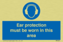 ear-protection-must-be-worn-in-this-area~