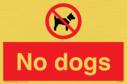 no-dogs~
