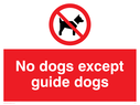 <p>No dogs except guide dogs with dogs prohibited symbol</p> Text: no dogs except guide dogs