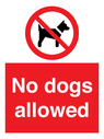 <p>No dogs allowed</p> Text:
