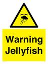 <p>Warning jellyfish</p> Text: