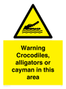 <p>Warning crocodiles, alligators or cayman in this area</p> Text: