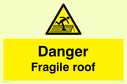 pdanger-fragile-roof-withnbspwarning-trianglep~