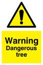 general warning symbol in warning triangle Text: Warning Dangerous tree