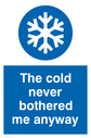 <p>The cold never bothered me anyway Funny Sign </p> Text: The cold never bothered me anyway